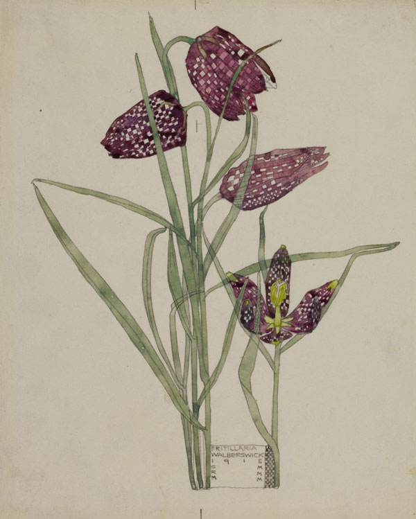 Charles Rennie Mackintosh watercolours